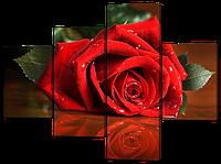 Модульная картина Красная роза и роса