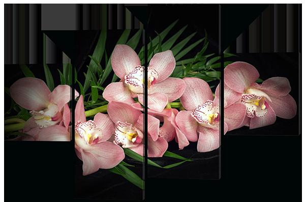 Модульная картина Семь розовых орхидей