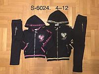 Трикотажный костюм 2 в 1 для девочек оптом, F&D, 4-12 лет,  № S-6024, фото 1