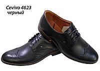 Туфли мужские классические  натуральная кожа черные на шнуровке  (4623), фото 1