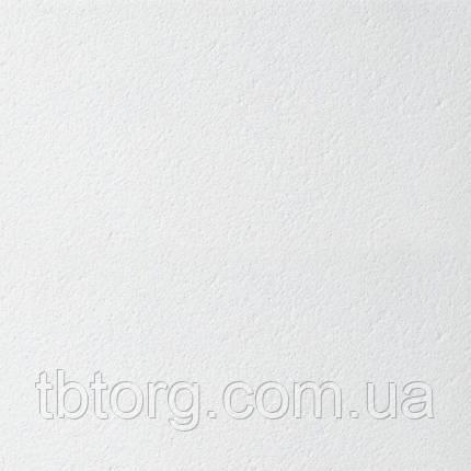 Подвесной потолок плита Армстронг Retail Board 600х600 x 12 мм, фото 2