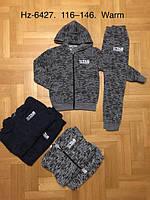 Трикотажный утепленный костюм 2 в 1 для мальчика оптом, Active Sport, 116-146 см,  № HZ-6427, фото 1