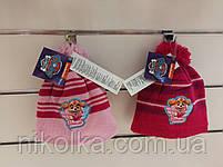 Шапки для девочек оптом, Disney, 52-54 рр., арт. 771-750, фото 2