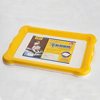 AnimAll туалет под пеленку для щенков и собак мелких пород, 56,2x43,5х4см (2 цвета)