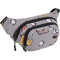 Поясная сумка на пояс Kite Adventure Time (бананка, бананки, сумки на пояс, Время приключений, сумки, модно)