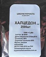 Халцедон насіння цибулі ріпчастої Semenaoptom 2 500 насінин