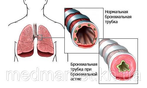 http://medmarket.kh.ua/