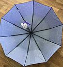 Женский зонт полуавтомат в подарочной упаковке (12 цветов), фото 2