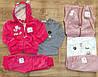 Велюровые костюмы-тройки на девочек оптом, S&D, 1-5 рр
