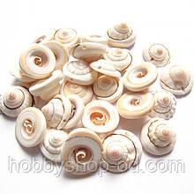 Бусины - ракушки (размер 1,5-2 см )в упаковке 45-50 г