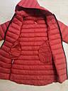 Куртки демисезонные для девочек GLO-STORY 110-160 р.р, фото 4
