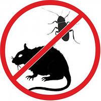Дезинфекция. Уничтожение грызунов, тараканов и др. насекомых