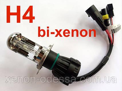 Лампа биксенон H4 6000 AС, фото 2