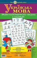 Українська мова 1 клас. Зразки каліграфічного письма в таблицях. НУШ