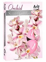 Свечи  ароматизированные орхидея чайные таблетки