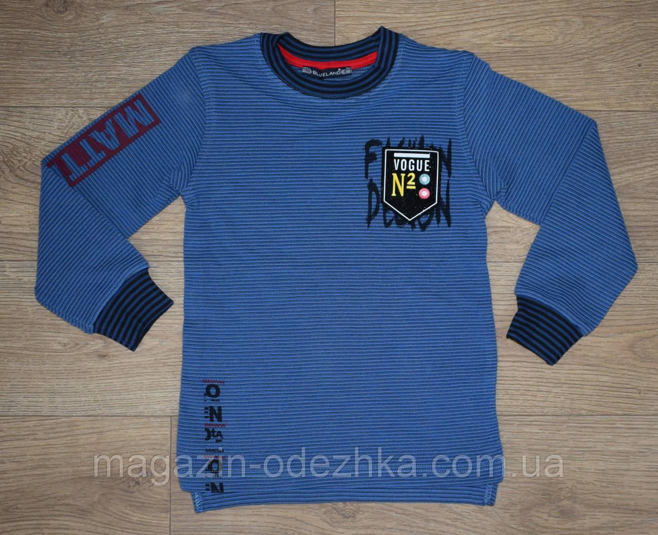 """Спортивная кофта для мальчика 110-116-122-128 рост """"Blueland """" Турция"""