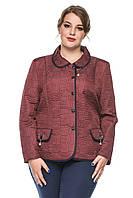 Женский пиджак больших размеров оптом и в розницу . Бордо