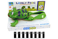 Лягушка муз. Lovely frog (коробка) 585 р.22,5х14х9,5 см. (шт.)