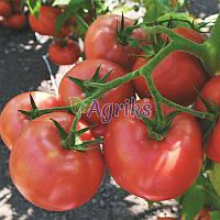 Семена томата индетерминантного Пинк Делайт F1 Ergon от 100 шт
