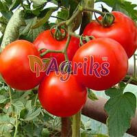 Семена томата детерминантного Верона F1 Nasko 250 шт