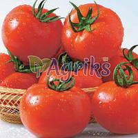 Семена томата индетерминантного Сентраль F1 Nasko от 100 шт