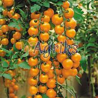 Семена томата индетерминантного Валенсия F1 Nasko 250 шт