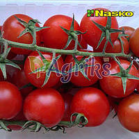 Семена томата индетерминантного Коллет F1 Nasko от 100 шт