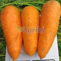 Семена моркови Болтекс Clause от 3 г