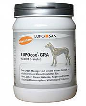 Lupocox-GRA Senior
