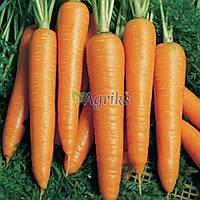 Семена моркови Вита Лонга Bejo от 1 г
