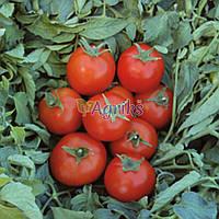 Семена томата детерминантного Топспорт F1 Bejo 5 г