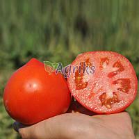 Семена томата детерминантного Каста (Супернова) F1 Clause от 1 000 шт