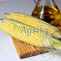 Семена кукурузы сахарной Тронка F1 Nasko 500 г