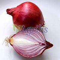 Семена лука Тимур Nasko 10 000 шт