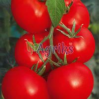 Семена томата индетерминантного Верлиока F1 Nasko 1 000 шт