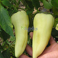 Семена перца Аккорд F1 Hazera 1 000 шт