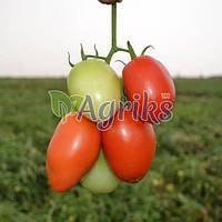 Семена томата детерминантного Сурия F1 Hazera 1 000 шт