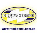 Ремкомплект гидроцилиндра поворота колёс (ГЦ 80*45) Т-151К / Т-150 (шевронные манжеты штока d-45 резиноткань), фото 4