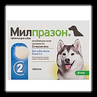 Милпразон - антигельминтик для собак от 5кг (2 таблетки) KRKA