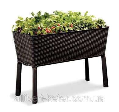 Подовжений горщик для квітів, рослин, трав та овочів EASY GROW графіт (Keter)