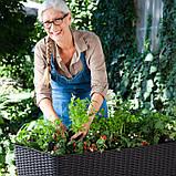 Подовжений горщик для квітів, рослин, трав та овочів EASY GROW графіт (Keter), фото 2