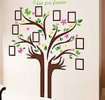 Самоклеющаяся  наклейка  на стену  Дерево и рамки (172х145см), фото 2