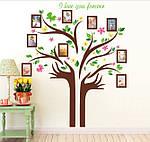 Самоклеющаяся  наклейка  на стену  Дерево и рамки (172х145см), фото 4