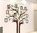Самоклеющаяся  наклейка  на стену  Дерево и рамки (172х145см), фото 3