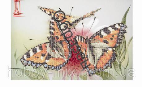 """Схема для частичной вышивки """"Бабочки"""""""