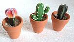 Набор кактусов искусственных (12 шт  в уп), фото 4