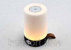 Внешний аккумулятор со светильником WS-D06 (1 USB)
