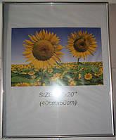 14BS1219-8 Рамка 40х50 серебристого цвета