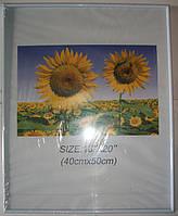 14BS1219-6 Рамка 40х50 белого цвета