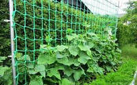 Разновидности садовых сеток: защитные, вольерные, шпалерные